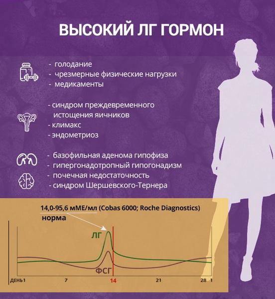 норма ЛГ у женщин