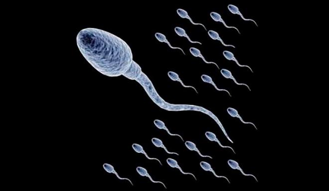 увеличить количество спермы